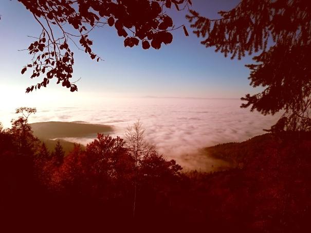 Inversija visame gražume belipant į Blauen viršukalnę. Beveik matosi prancūzų Vogėzų kalnai